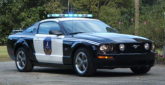 Police Mustang