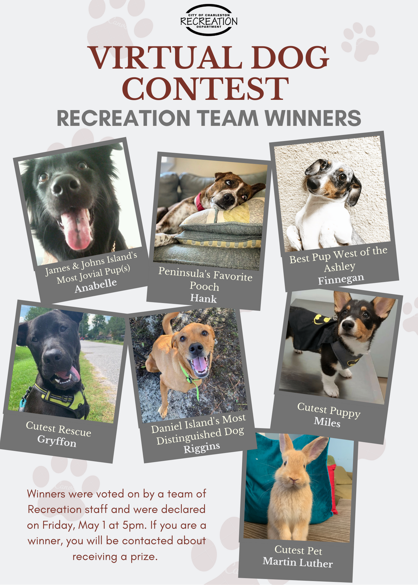 Virtual Dog Contest - Rec Team Winners (2)