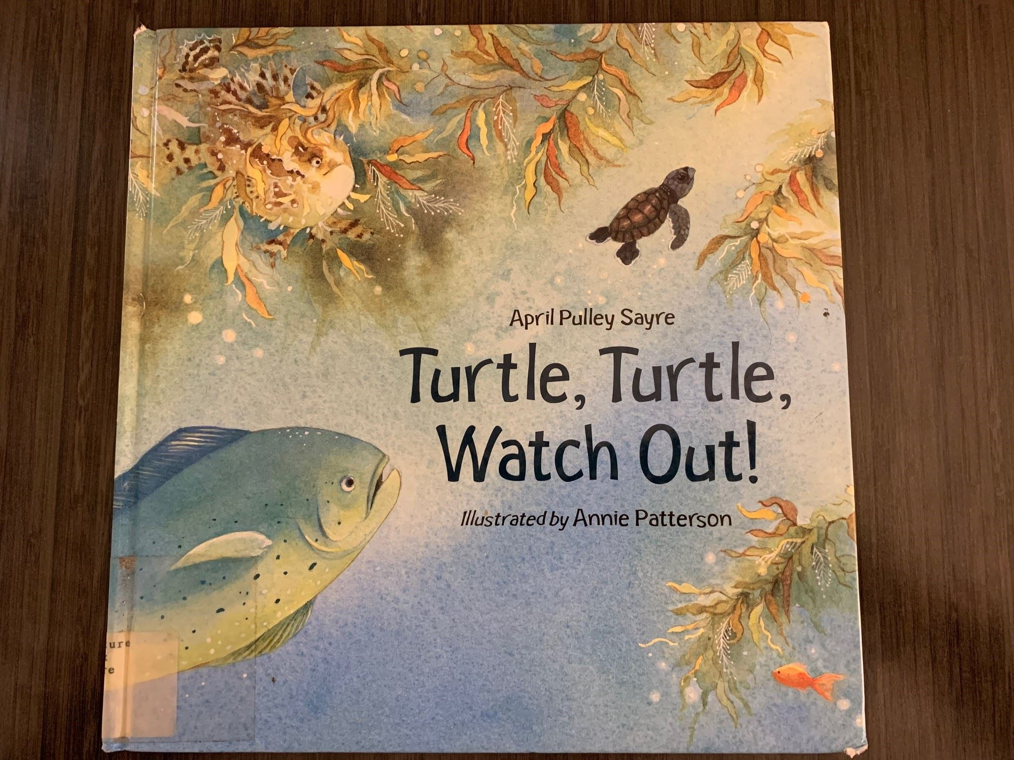 Book 43 - Turtle Turtle Watch Out